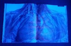 Imagen con lupa azul